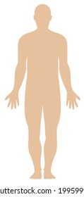 Illustration of a plain human body outline