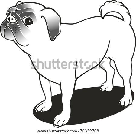 Illustration Purebred Pug Coloring Book Stock Illustration 70339708