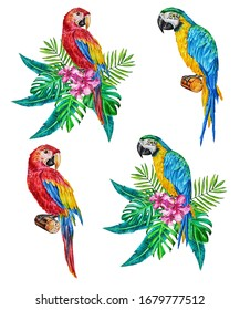 Illustration of red and blue macaw parrots that are sitting on a branch and bouquets of tropical leaves and flowers. Hand painted, watercolor, design element, prints for wallpaper and more.