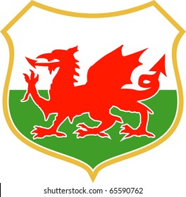 illustration of a red welsh wales dragon with shield in background