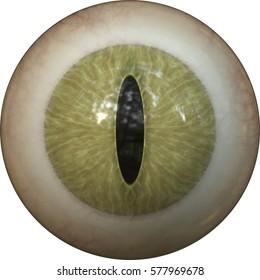 Illustration of a reptile iris. Digital artwork creative graphic design.