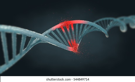 Illustration of ribonucleic acid or dna strand