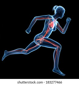 illustration of a running woman - visible blood vessels