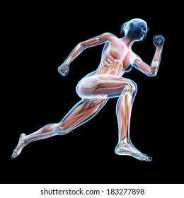 illustration of a running woman - visible muscles