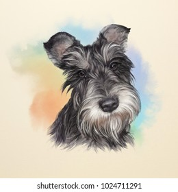 Illustration of the Scottish Terrier. Dog is man's best friend. Animal collection: Dogs. Watercolor Dog Pug Portrait - Hand Painted Illustration of Pets. Art background for design of banner, T-shirt.