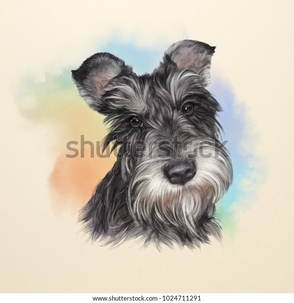 IRISH TERRIER LOVELY HEAD STUDY VINTAGE STYLE DOG PRINT POSTER