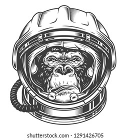 illustration, serious gorilla head in the astronaut helmet on a white background