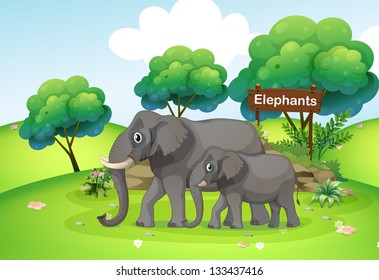 Illustration of a small and a big elephant