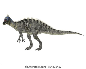 Illustration of a Suchomimus (dinosaur species) isolated on a white background