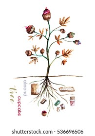 Illustration of tree with cupcakes and ingredients