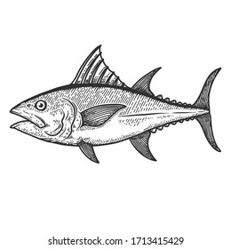 Illustration of tuna fish in engraving style. Design element for logo, label, sign, poster, t shirt.