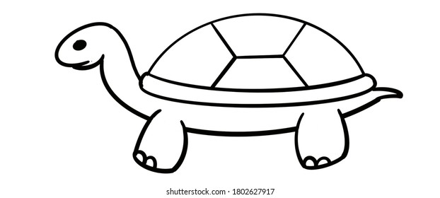 Illustration of turtle.Basic to draw turtle. Draw a basic turtle shape.Easy turtle drawing