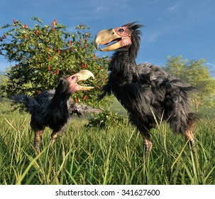 An illustration of two male Gastornis in a wetland.  Gastornis are an extinct genus of giant flightless birds that lived during the late Paleocene and Eocene epochs of the Cenozoic era.