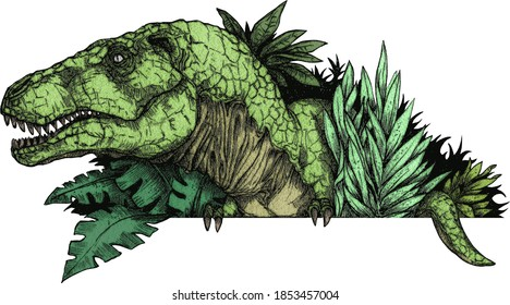 an illustration of a tyrannosaurus rex sticking its head out of the bushes