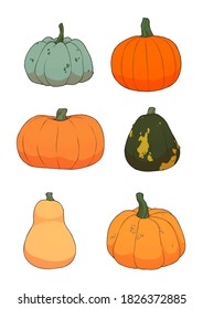 Illustration of various colorful pumpkins