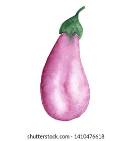 illustration of watercolor vegetable eggplant purple on a white background drawn by hand