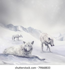 illustration with white wolves