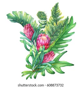 Ilustration of a bouquet with pink Protea flowers and tropical plants. Hand drawn watercolor painting on white background.