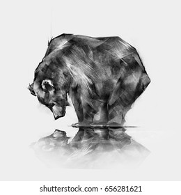 image of the bear looking in the reflection