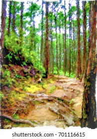 Impressionism Style Oil Painting; Trail at the World Heritage Forest Kumano Kodo, Wakayama Prefecture, Japan, May, 2012