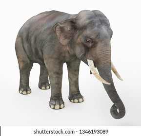 Indian elephant against a white background Computer generated 3D illustration
