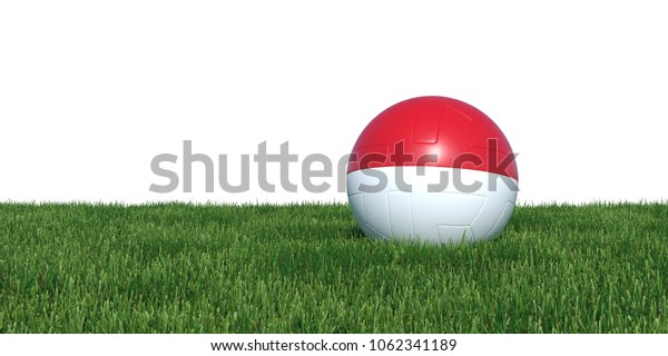 Indonesia Indonesian flag soccer ball lying in grass, isolated on white background. 3D Rendering, Illustration.