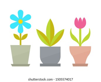 Indoor flowers with blossom and big leaves in clay pots. house plants as decorative elements. pots beautiful raster illustrations.