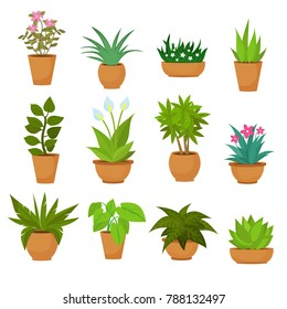 Indoor and outdoor landscape garden potted plants isolated on white. set green plant in pot, illustration of flowerpot bloom