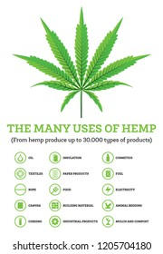 Industrial Hemp Infographic with Icons of Products. The Many Uses of Cannabis