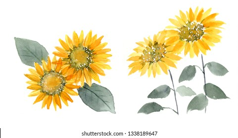 Ink paintings of Sunflower.