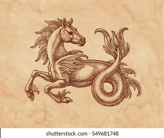 Ink and pen drawing on brown old paper, sea horse Hippocampus, fantastic medieval animal.