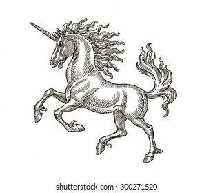 Ink and pen hand drawing of mythological animal, unicorn. Illustration in vintage style.