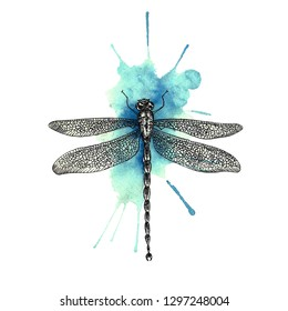 Ink and watercolor dragonfly
