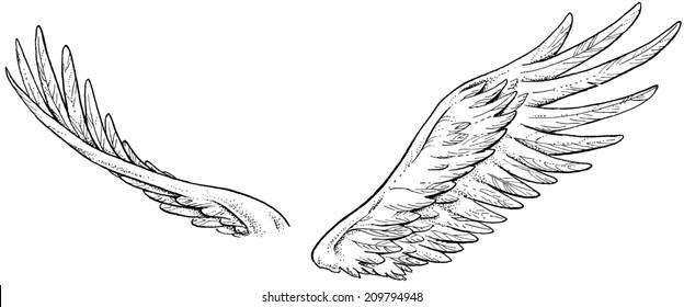 Inked Wings