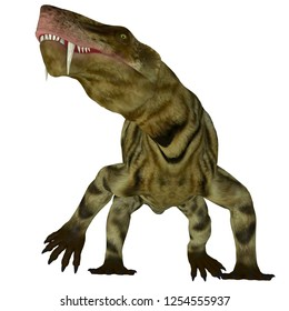 Inostrancevia Dinosaur on White 3D illustration - Inostrancevia was a carnivorous cat-like dinosaur that lived in Russia during the Permian Period.