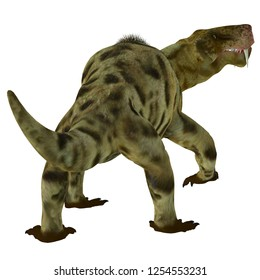 Inostrancevia Dinosaur Tail 3D illustration - Inostrancevia was a carnivorous cat-like dinosaur that lived in Russia during the Permian Period.