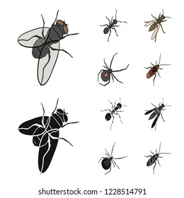 An insect arthropod, an osa, a spider, a cockroach. Insects set collection icons in cartoon,black style bitmap symbol stock isometric illustration web.