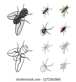 An insect arthropod, an osa, a spider, a cockroach. Insects set collection icons in cartoon,outline style bitmap symbol stock isometric illustration web.
