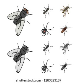 An insect arthropod, an osa, a spider, a cockroach. Insects set collection icons in cartoon,monochrome style bitmap symbol stock isometric illustration web.