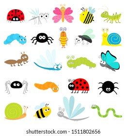 Insect icon set. Lady bug Mosquito Butterfly Bee Grasshopper Beetle Caterpillar Spider Cockroach Fly Snail Dragonfly Ant Lady bird Worm. Cute cartoon kawaii funny doodle character. Flat design
