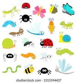 Insect icon set. Mantis Lady bug Mosquito Butterfly Bee Grasshopper Beetle Caterpillar Spider Cockroach Fly Snail Dragonfly Ant Lady bird Worm. Cute cartoon kawaii funny character. Flat design