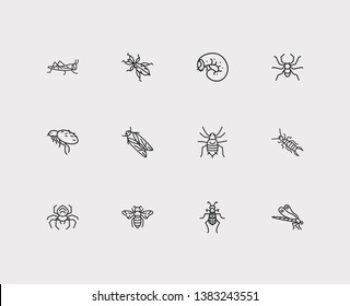Insect icons set. Dragonfly and insect icons with aphid, tiger beetle and flea. Set of arachnophobia for web app logo UI design.