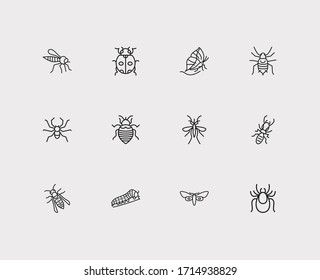 Insect icons set. Termite and insect icons with mosquito, aphid and wasp. Set of pernicious for web app logo UI design.