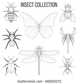 Insect set bee, fly, butterfly, dragonfly, beetle, ant, spider, scorpion insect geometric lines silhouette isolated on white background vintage design element illustration