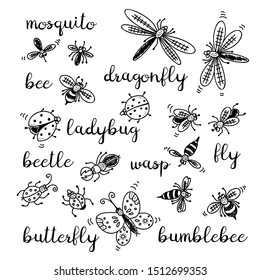 Insects doodle set, collection isolated on white background