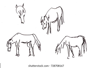 Instant sketch,  herd of horses