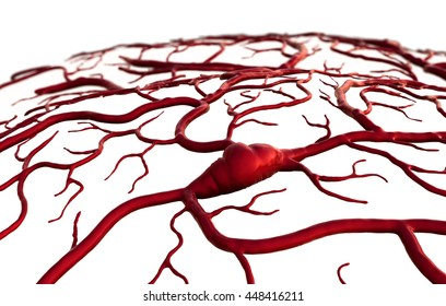 insult and brain, Brain Model, brain surfase, 3D illustration of circulatory system, disease, heart attack, Capillary, circulatory system on the white background