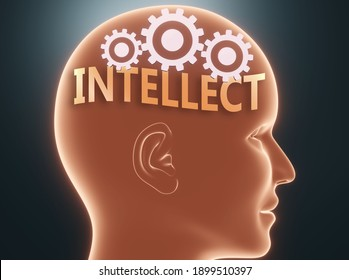Intellect inside human mind - pictured as word Intellect inside a head with cogwheels to symbolize that Intellect is what people may think about and that it affects their behavior, 3d illustration