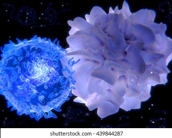 Interaction between a dendritic cell and a T-lymphocyte. 3d-rendering. Dendritic cells  are antigen-presenting cells of the immune system.