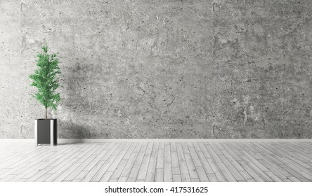 Interior background of room with concrete wall, wooden floor and plant 3d rendering